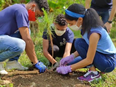 imagen Los educandos Anthony Cruz, Iván Goris y Amalia Hidalgo sembraron varias plantas en la zona boscosa del Liceo Científico