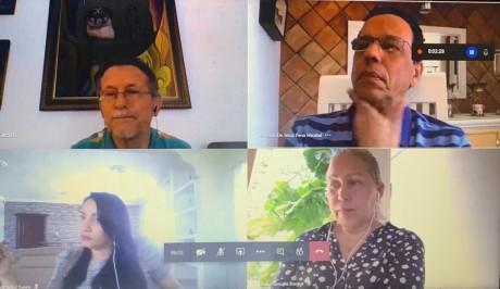 imagen Ministro Peña Mirabal durante reunión virtual